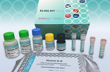 ELISA Kits